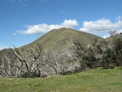 The Three Peaks of Mt Feathertop
