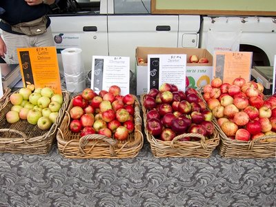 Tasmanian Apples at a Farmers' Market