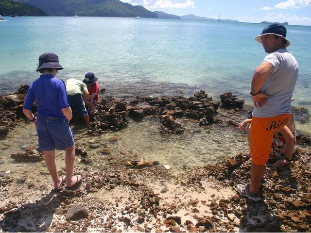 Combing for Hermit Crabs at Hill Inlet