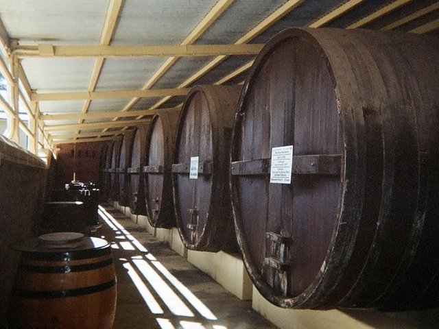Wine Barrels at Seppeltsfield Winery