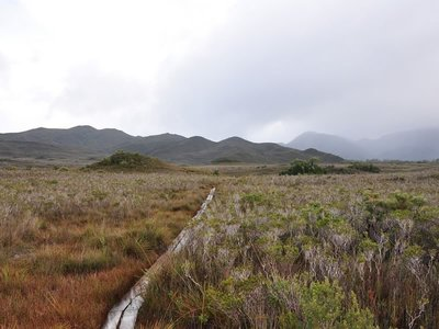 South Coast Track, Southwest National Park