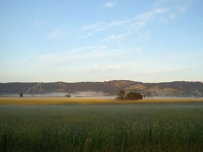 A Misty Morning in Yarra Glen