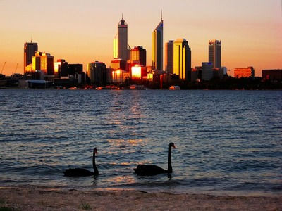 Perth's Swan River (literally!)