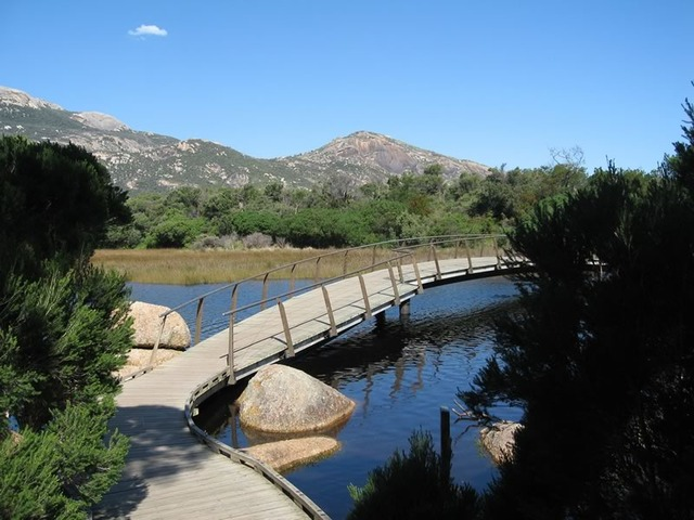 Bridge Over Tidal River