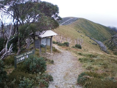 Razorback Spur Trail to Mt Feathertop